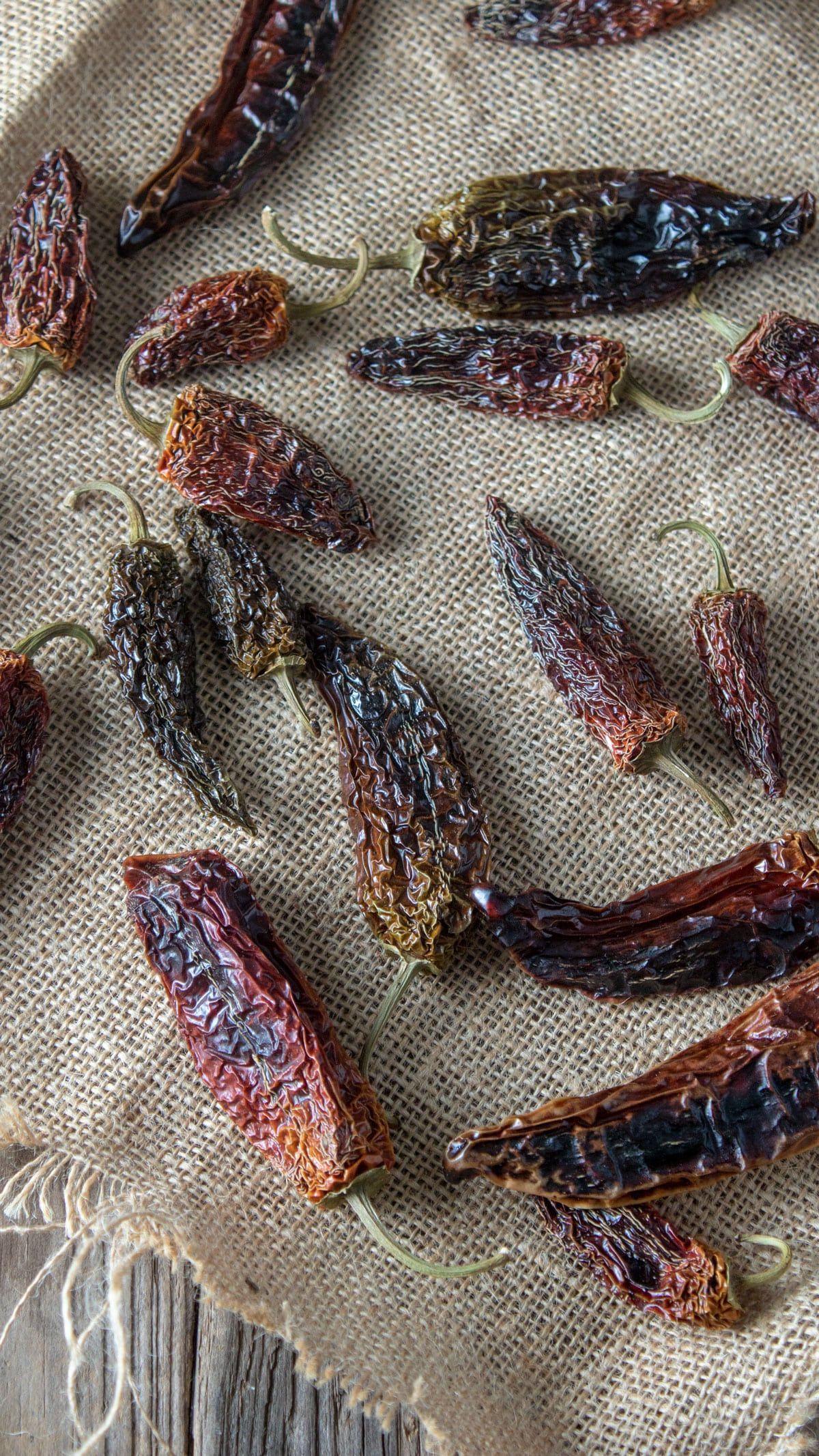 Dried peppers on burlap.