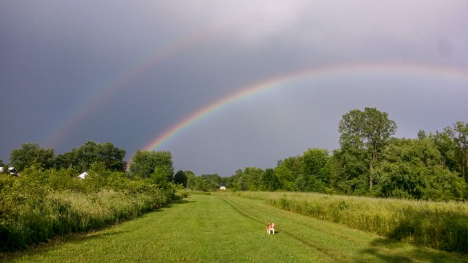 photo of double rainbow over large field