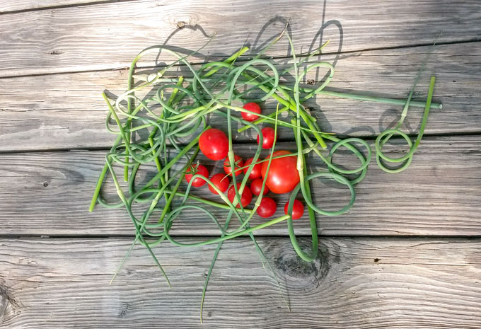 cherry tomatoes and garlic scapes on wooden board