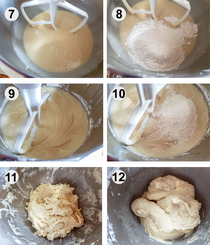 Dough in mixing bowl. Flour added to dough. Dough after mixing. More flour added. Dough after mixing. Dough after resting.