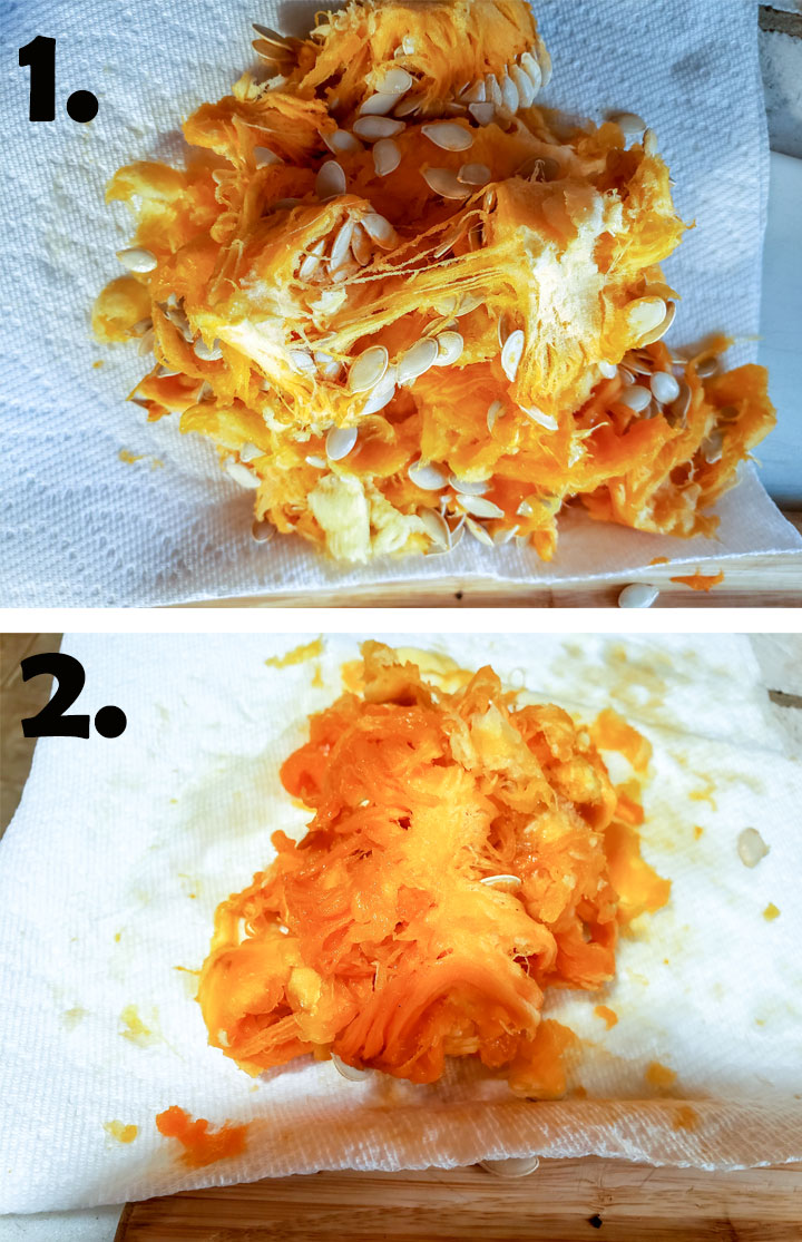 Seeds and endocarp removed from inside pumpkin. Seeds separated from endocarp.