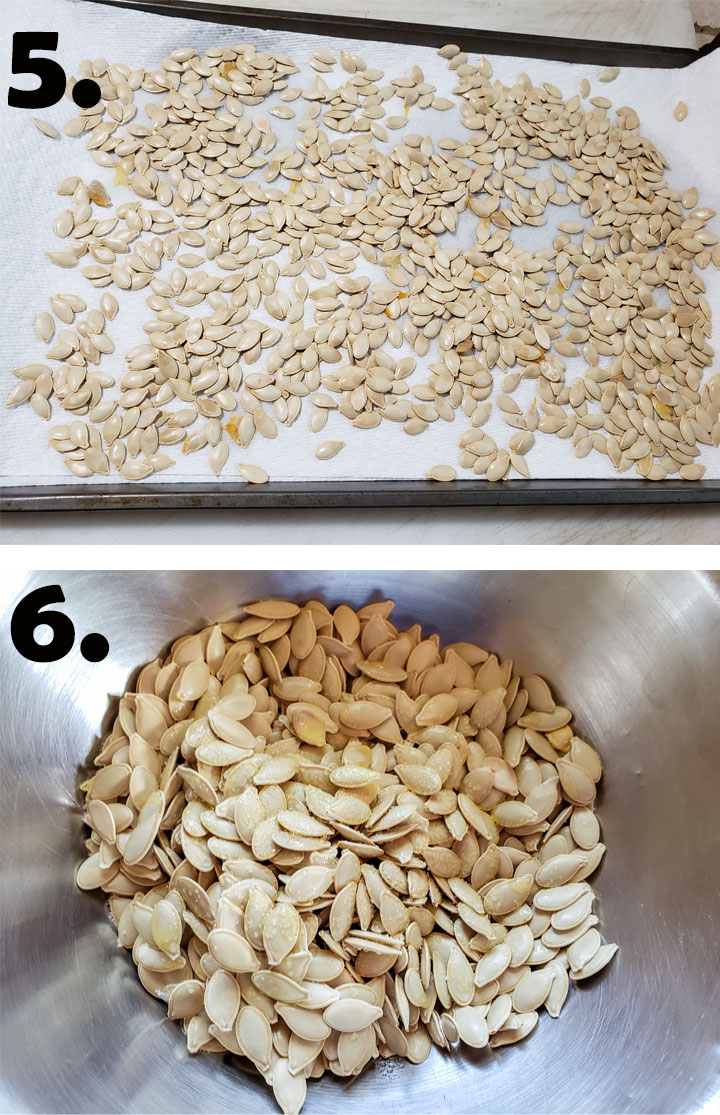 Seeds placed on paper towel. Seeds in bowl tossed with oil and salt.