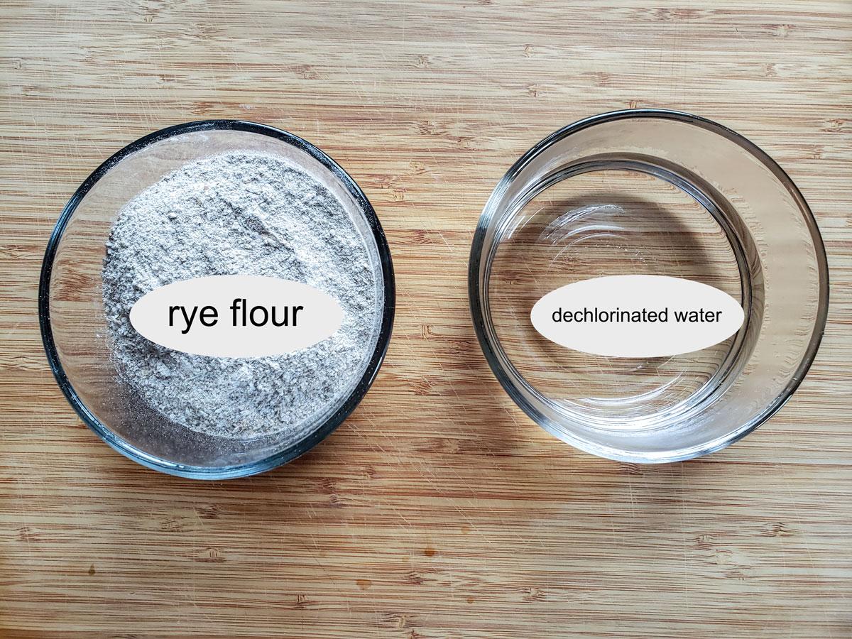 Ingredients in sourdough starter- rye flour dechlorinated water.