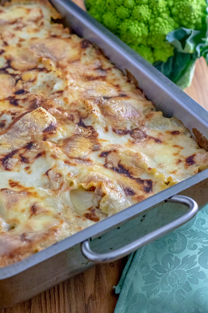 Whole lasagna pan filled with white lasagna