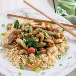 cashew pork stir fry on white plate