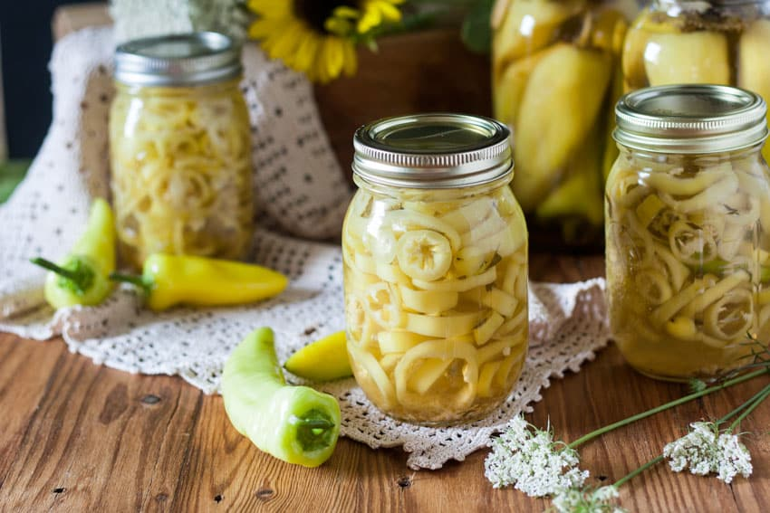 Canning Peppers is super easy! This will show how to pickle them in no time!