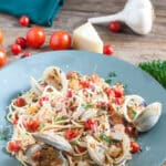 Seafood Fra Diavolo Whole clams with shells, chunks of whole bay scallops and burst cherry tomatoes on a bed of pasta