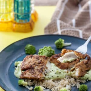 gluten free fish fillets