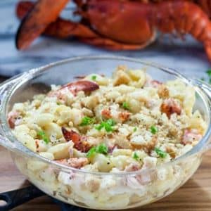 creamy mac & cheese with lobster