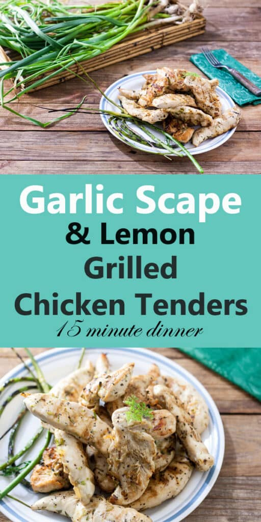 garlic scape lemon grilled chicken tenders pin
