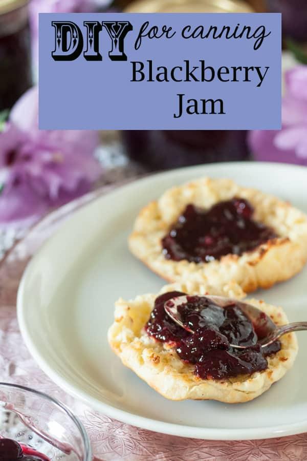 Blackberry Jam pinterest image with text overlay.