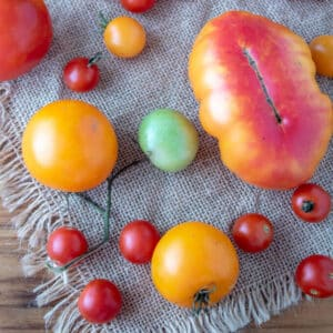 Colorful tomatoes on burlap