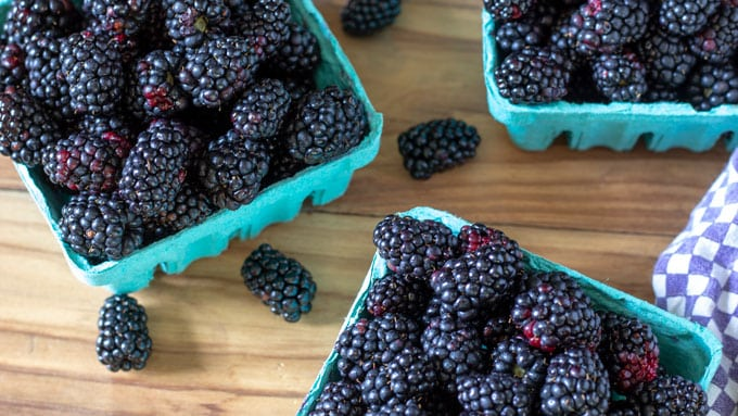 Quart baskets filled with fresh blackberries.