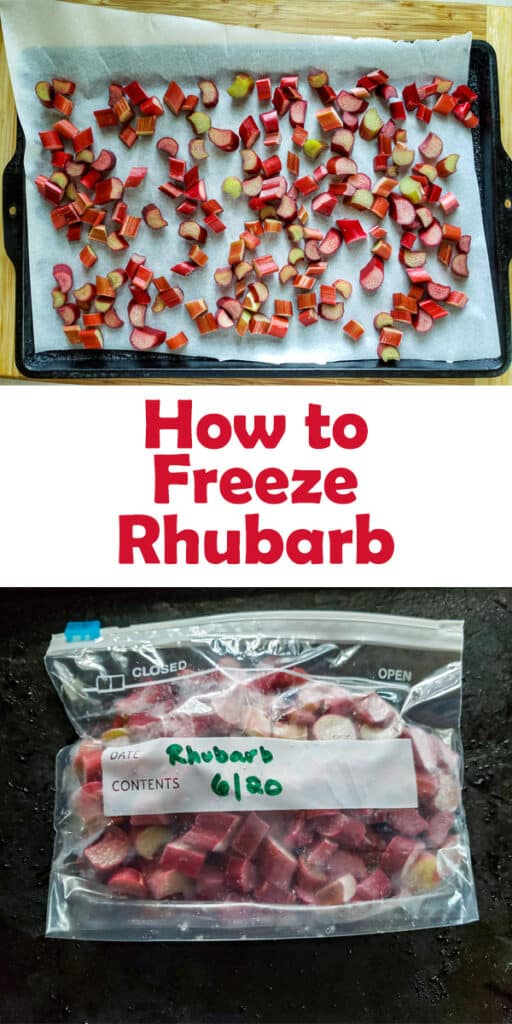 How to freeze rhubarb Pinterest image with text overlay.