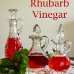 Homemade rhubarb vinegar Pinterest image with text overlay.