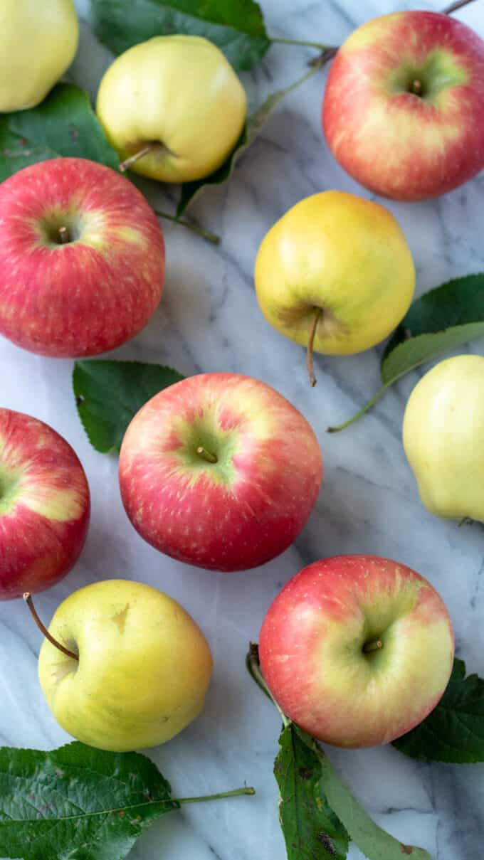 Colorful apples on marble background.