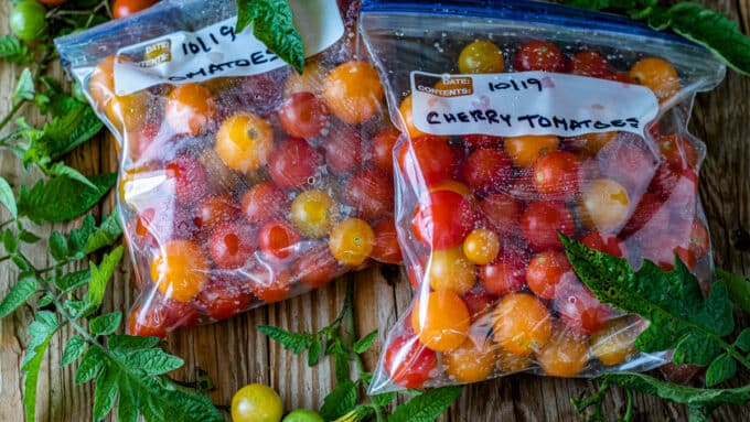 Colorful tomatoes in freezer bag.