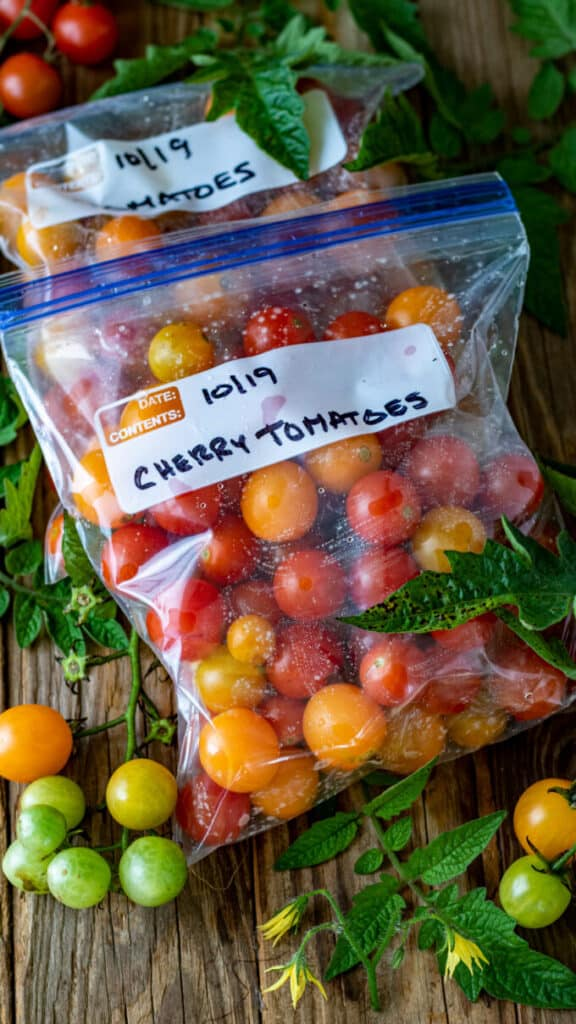 Fresh tomatoes in bag ready for freezing.