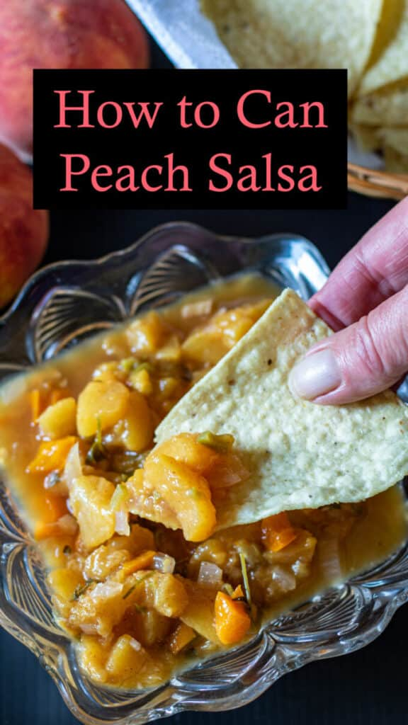 Canning Peach Salsa Pinterest image with text overlay