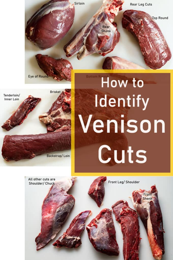 Venison cuts on white board. Pinterest image with text overlay.