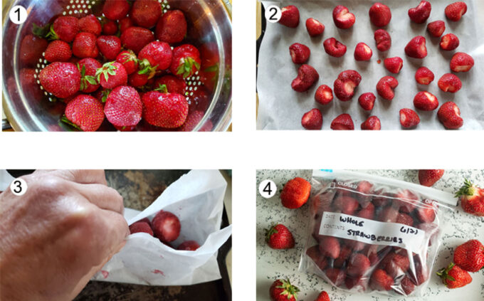 Step by step photographs of the process for freezing whole strawberries . See details in recipe below.